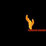 http://balserapr.com/wp-content/uploads/2018/09/balsera-logo-AA-10-150x150.png